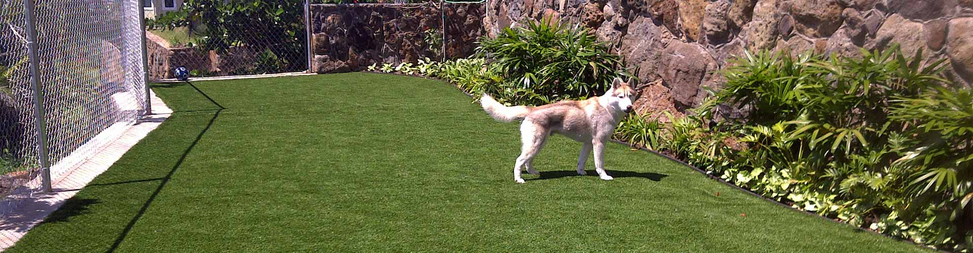 Fake grass dog run installation in Hawaii
